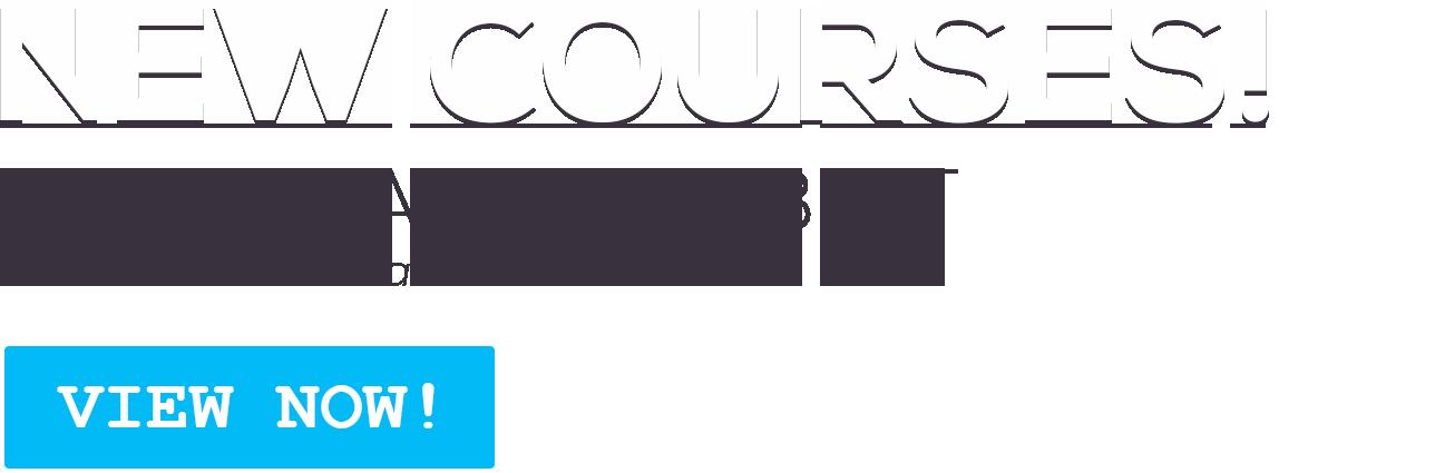 New Six Sigma Courses