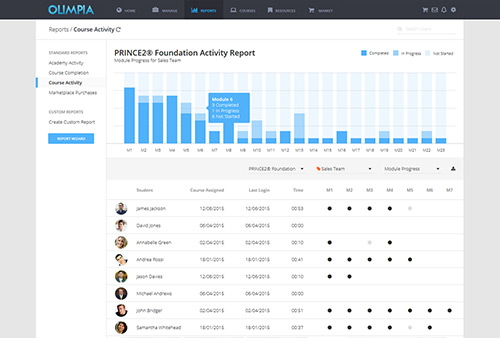 Report Overview Example
