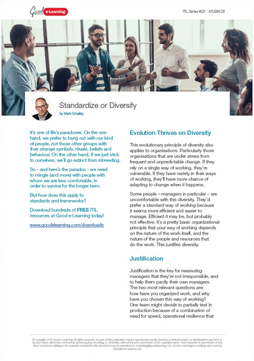 ITIL - Standardize or Diversify