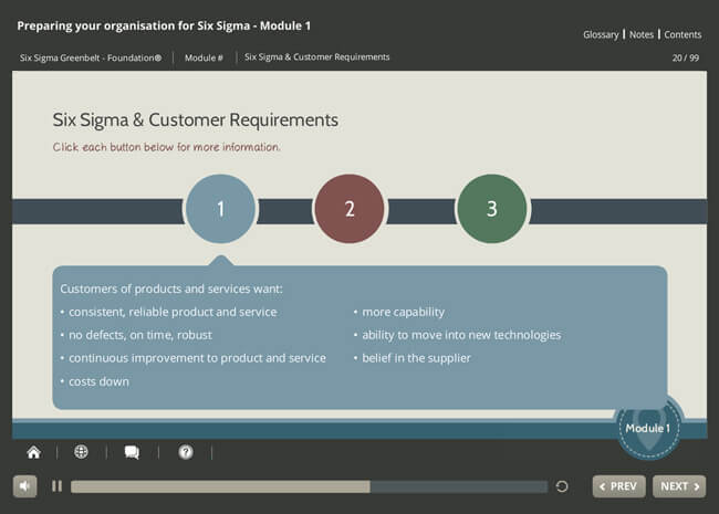ISO 18404 Lean & Six Sigma: Preparing Your Organization Screenshot 3