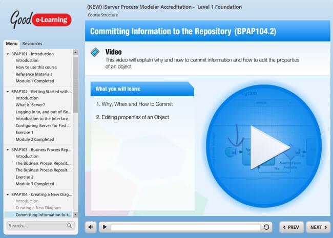 iServer Process Modeler Screenshot 2