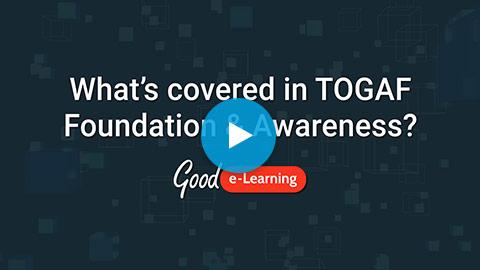 TOGAF® 9.2 Foundation & Awareness Suite Video